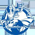 Единый Центр Судебных Переводов